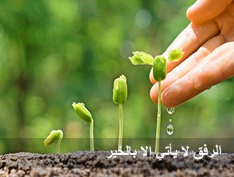 Photo of تقول عمتي  (  الرفق جوهره  )