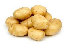 صورة ايقاف تصدير البطاطا حتى آذار  2021